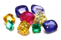 The Senior Gems® Workshop Series
